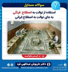 استفاده از توالت فرنگی (به اصطلاح فرنگی) به جای توالت ایرانی(به اصطلاح ایرانی) «چرا؟»